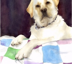 Watercolor of Kelly, a yellow lab