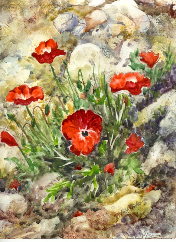 "Poppies, matted 16"" x 20"" for $79 or 8"" x 10"" for $29"