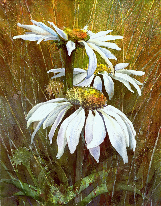 "White Coneflowers (Watercolor, 15"" x 18"" matted) $389"